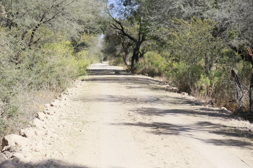 Benefician a comunidades con desazolve, rehabilitación de caminos y saneamiento