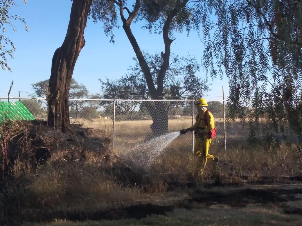 Trabajan contra incendios de pastizal